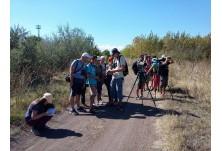 Полеви курс за разпознаване на птици 2016: обучение миграция